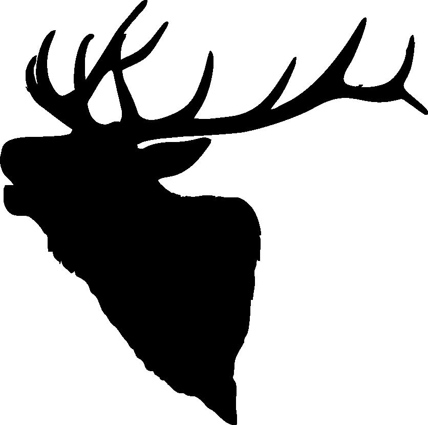 cow elk clipart - photo #34
