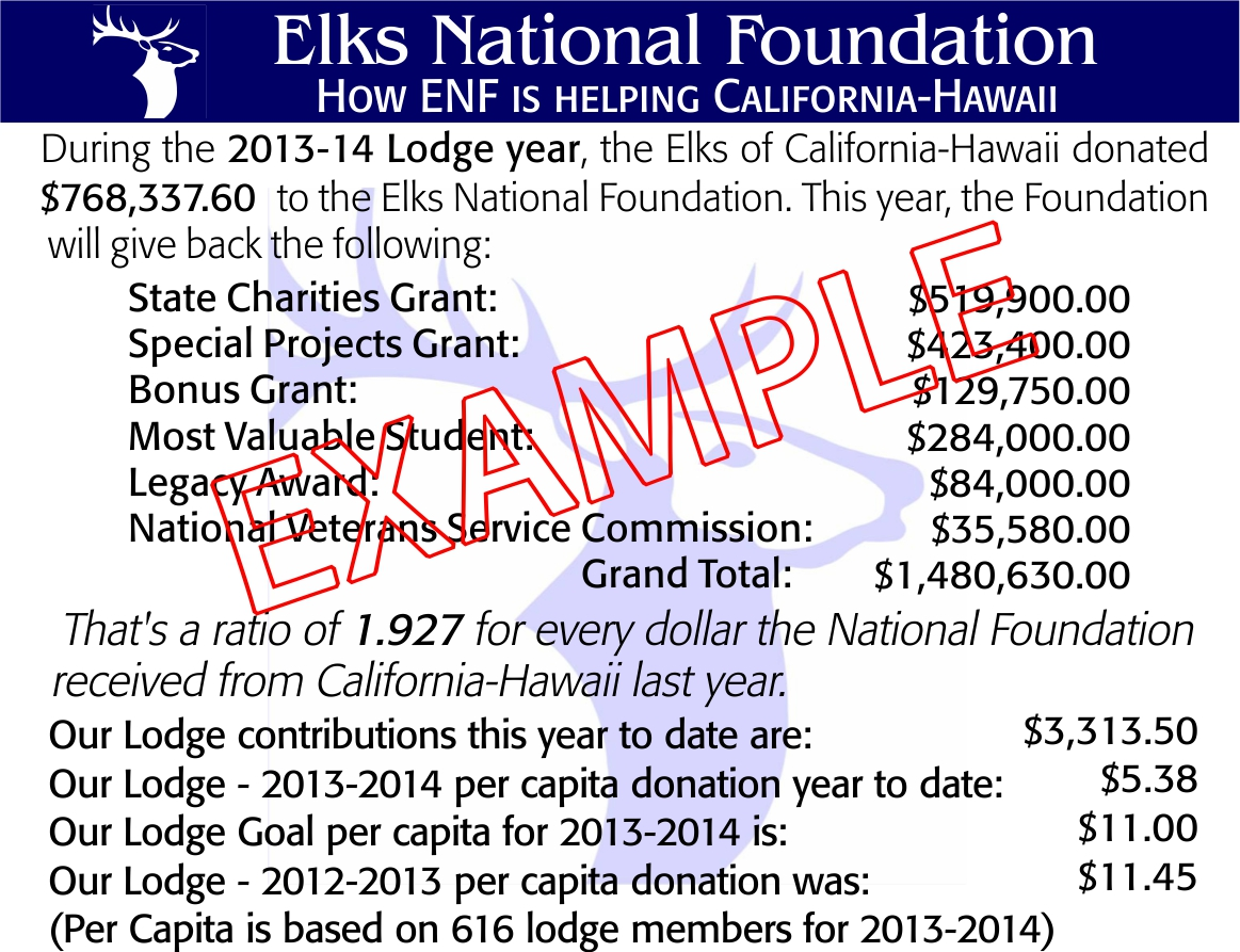 enf-donation-information-example