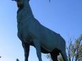 Bronze Elk - 768 x 1024