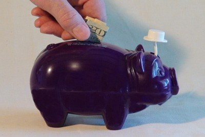 CHEMPI Purple Pig helps kids Walk, Talk, See and Play