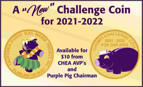 CHEA Challenge Coin 2021-2022