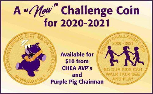 CHEMPI Challenge Coin 2020-2021