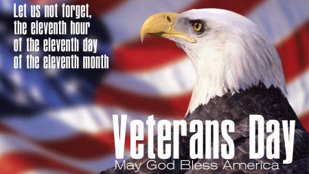 Veterans Day Eagle