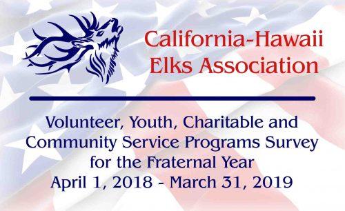 Volunteer Services Survey