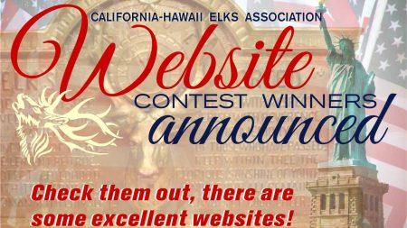 website-winners